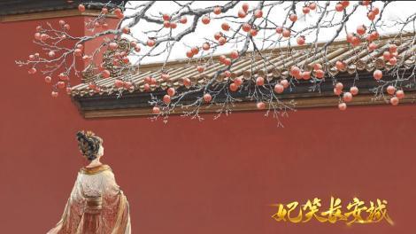 妃笑長安城