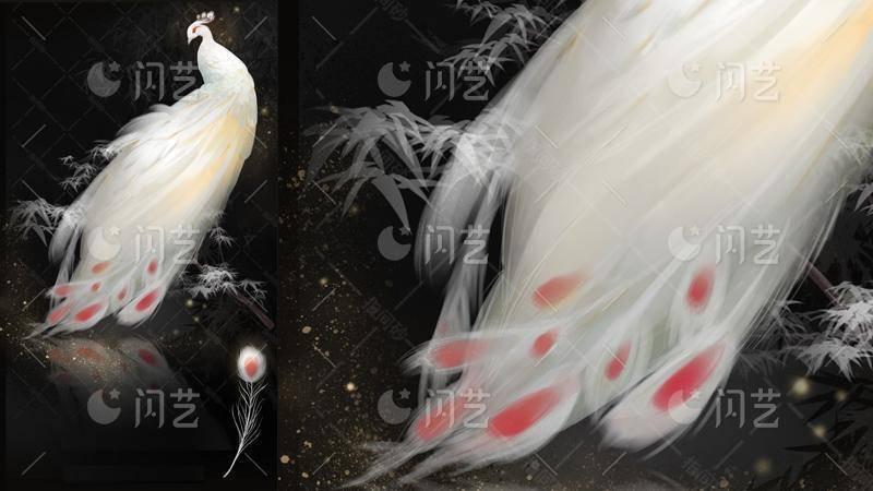 白孔雀背景封面素材-闪艺素材店
